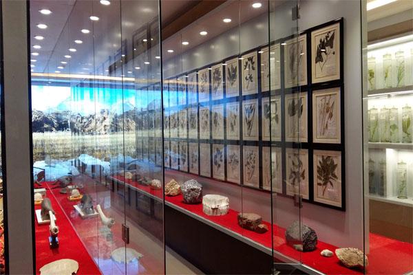 竞博app展厅2.jpg